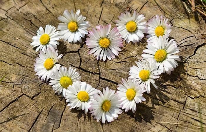 attirer l'amour facilement avec notre voyance