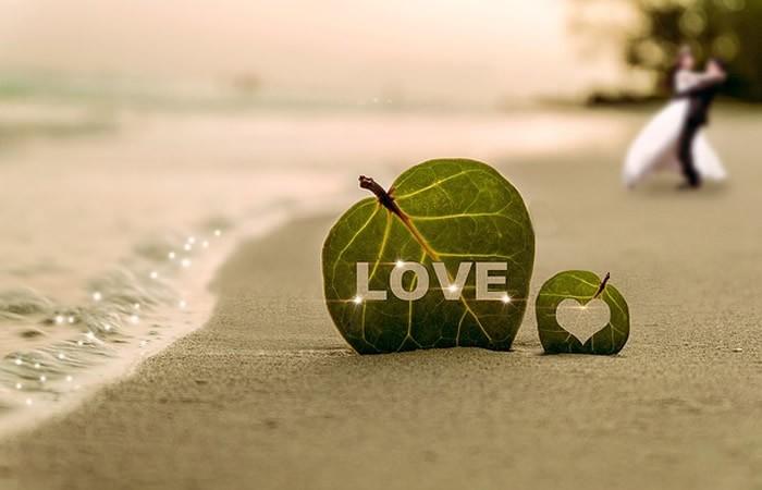 conseils pour trouver le grand amour
